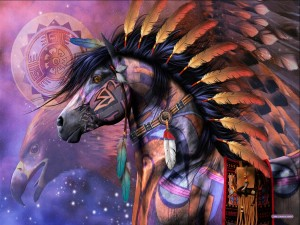 shaman-visions-300x225